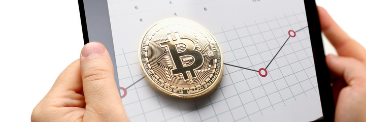Bitcoin price live statistical guide